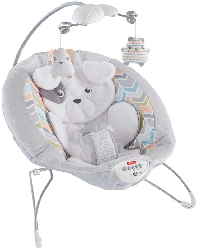 Fisher-Price-bouncer reviews